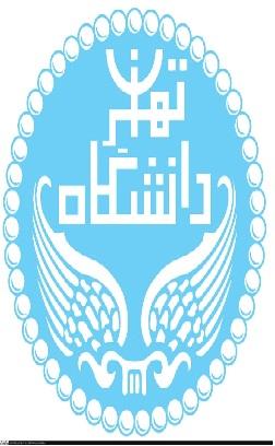 پایان نامه نقش سازمانهای غيردولتی در ارائه كمکهای بشردوستانه: مورد مطالعه زلزله بم